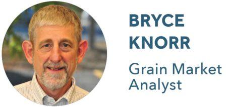 Bryce Knorr, Grain Market Analyst